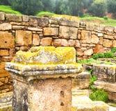 chellah w Morocco Africa stary rzymski marniejący zabytek a Obrazy Stock