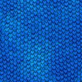 Échelles bleues de dragon de Dragonskin Photographie stock libre de droits