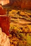 chelly峡谷de 图库摄影