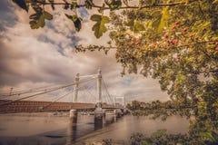 Chelsea Bridge in autumn. Chelsea Bridge over the river Thames, London, England Royalty Free Stock Photos