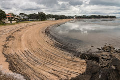 Cheltenham beach in Devonport at low tide Royalty Free Stock Photography