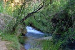 Chelva van de watersleep rivier Stock Afbeelding