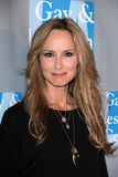 Chely Wright immagine stock