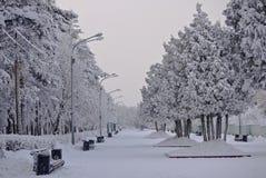 chelyabinsk Gagarin& x27 ; parc de s pendant l'hiver Photographie stock libre de droits