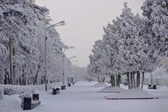 chelyabinsk Parque del ` s de Gagarin en el invierno Imagen de archivo