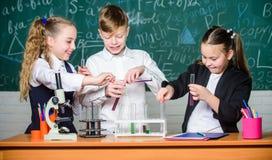Chemia jest zabaw? Lab mikroskop i testowanie tubki Chemii nauka biologia eksperymenty z mikroskopem Ma?e dzieci fotografia stock