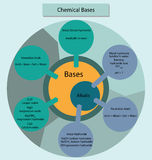 Chemical bases and alkalis summarisied in diagram form. Colorful diagram showing the relationship of chemical bases and alkalis Royalty Free Stock Images