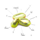 The chemical composition of kiwi Royalty Free Stock Photos