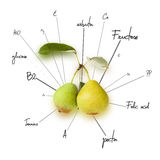 The chemical composition of pear Stock Images