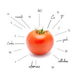 The chemical composition of tomato Royalty Free Stock Photos