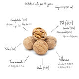 The chemical composition of walnut Royalty Free Stock Image