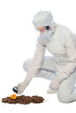 Chemical ecologist measures the level of radiation Royalty Free Stock Photo
