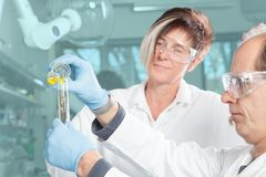 Chemical education Royalty Free Stock Photography
