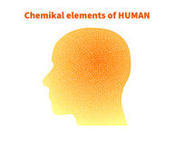 The chemical elements. Of  human Stock Photography