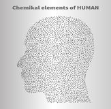 The chemical elements. Of  human Royalty Free Stock Image