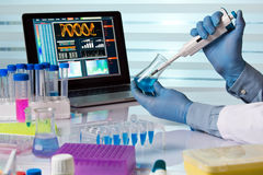 Chemical engineer working in laboratory with pipette and flask. Scientist holding flask and working with laptop in lab / chemical engineer working in laboratory Stock Images
