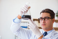 The chemical engineer working on oil samples in lab Royalty Free Stock Photography
