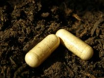 Chemical fertilizer tablets Royalty Free Stock Photo