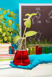 Chemical flask with experimental liquid Stock Images