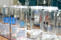 Chemical Flasks. In a laboratory Stock Images