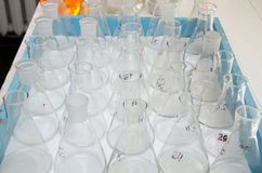 Chemical flasks in the chemical laboratory Stock Photos