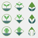 Chemical Free Vegetable Logo Royalty Free Stock Photography