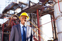 Chemical industry manager Royalty Free Stock Images