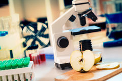 Laboratory microscope. Chemical Laboratory of the Food supply / control the amount of nitrates, herbicides and pesticides Royalty Free Stock Photography