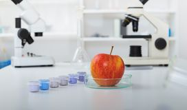 Chemical Laboratory of the Food supply Royalty Free Stock Image