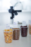 Chemical Laboratory of the Food supply . Food in laboratory, dna modify .Toning image. Stock Images