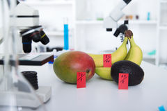 Chemical Laboratory of the Food supply . Food in laboratory, dna modify . Toning image stock photo