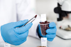 Chemical Laboratory of the Food supply . Food in laboratory, dna modify . Stock Images
