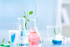 Chemical laboratory glassware Stock Images