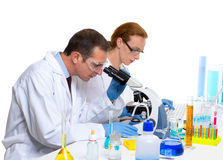 Chemical laboratory with two scientist working Royalty Free Stock Image