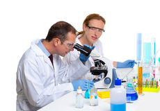 Chemical laboratory with two scientist working. With test tubes and microscope Royalty Free Stock Photo