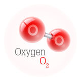 Chemical model of oxygen molecule. Assembly elements Royalty Free Stock Photography
