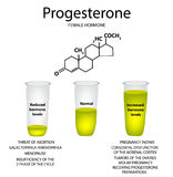 The chemical molecular formula of the hormone progesterone. Female sex hormone. Decrease and increase of progesterone. Infographics Vector illustration Stock Photos