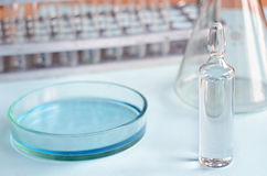 Chemical research in Petri dishes. Vaccine ampoule. Medicament. Stock Photos