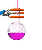 Chemical round bottom flask on a stand with solution Royalty Free Stock Image