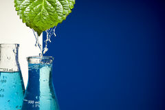 Chemical Test Tube and leaf royalty free stock image