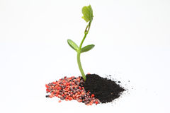 Chemical vs Organic fertilizer agriculture. Concept of agriculture using chemical vs organic fertilizer royalty free stock photos