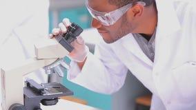 Chemicus die door een microscoop kijken stock videobeelden