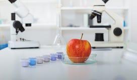 Chemiczny laboratorium zapasy żywności Obraz Royalty Free