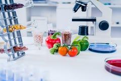 Chemiczny laboratorium zapasy żywności Jedzenie w laboratorium, dna modyfikuje GMO Genetycznie zmodyfikowany jedzenie w lab fotografia stock