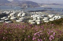 Chemiefabrik mit wilden Blumen Stockfotografie