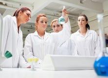 Chemiekursteilnehmer, die eine Flüssigkeit betrachten lizenzfreies stockfoto