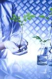 Chemiemateriaal, experimenteel installatieslaboratorium royalty-vrije stock foto's