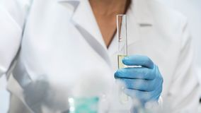 Chemiestudent, der Reagenzglas mit der gelben Flüssigkeit, medizinische Forschung tuend hält lizenzfreie stockbilder