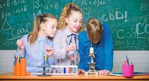 Chemiewissenschaft Kleinkinder, die Chemie im Schullabor erwerben Biologieexperimente mit Mikroskop Kleine Kinder lizenzfreie stockfotografie