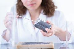 Chemik analizuje próbkę w laboratorium obrazy stock